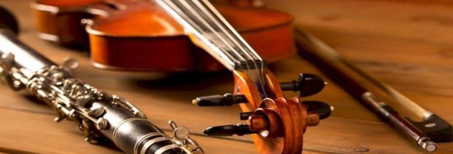 instrument de musique d'occasion